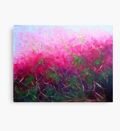 Bursting with colour Canvas Print
