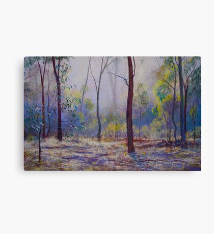'Moody Bush Blues' Canvas Print