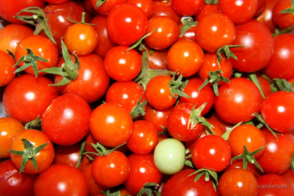 Cherry Tomatoes by vanderson