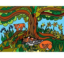 WOODLAND FRIENDS - SPRING Photographic Print