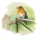 Robin on Rusty Gate by Maureen Sparling