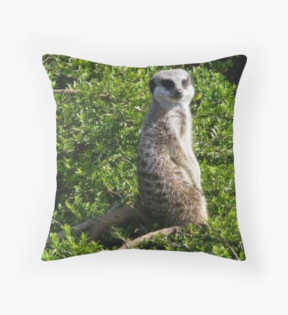 Cant Sneak Anything Past Me Throw Pillow