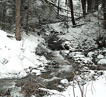 Winter Stream by Susan R. Wacker