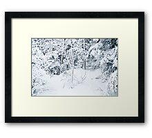 Powder Day Framed Print