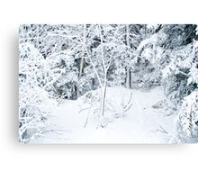 Powder Day Canvas Print