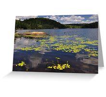 Bear Lake - Ontario, Canada. Greeting Card