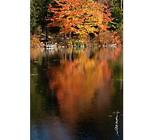 Maple Reflections Photographic Print