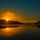 Morning reflection by browncardinal8