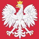 Polish Banner by PolishArt