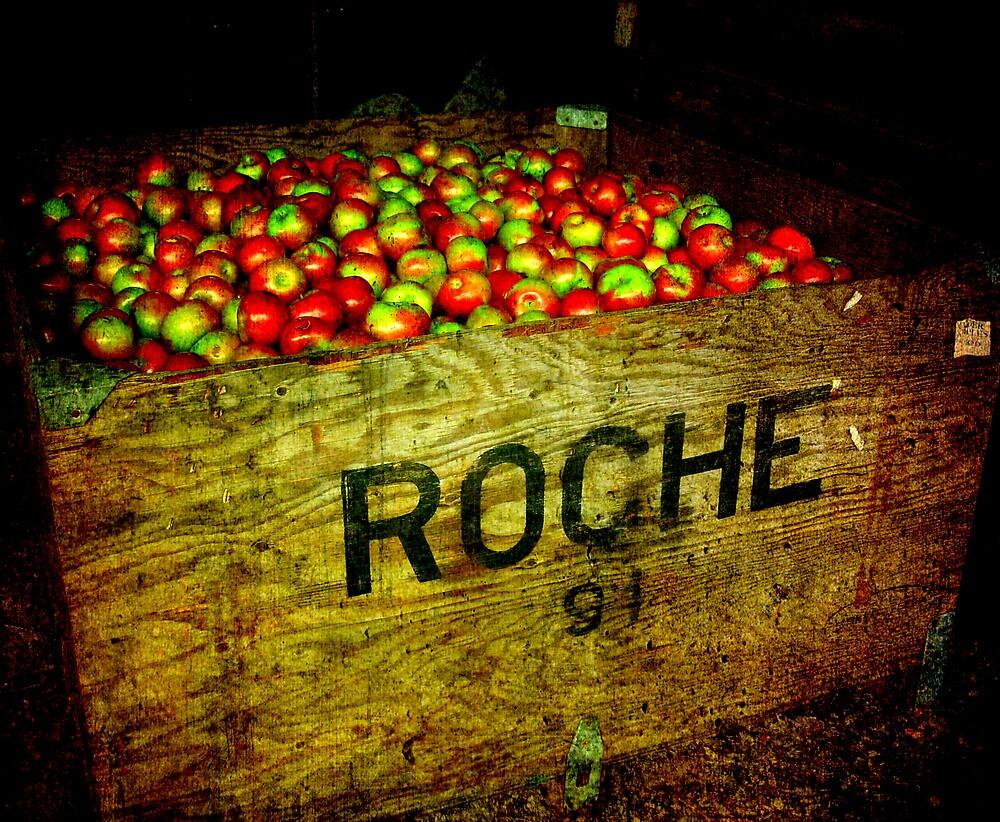 Roche ~ Cider Time!!! by Debbie Robbins