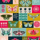 Lepidoptery tiles by Andrea Lauren  by Andrea Lauren