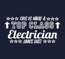 This Is What A Top Class Electrician Looks Like by Chimpocalypse