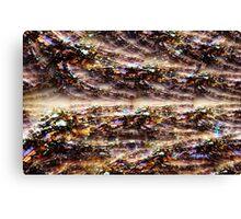 2010-09-14 _DSC_7543 _GIMP _1 Canvas Print