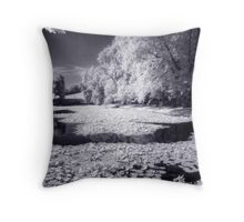 Castle Park Pond II Throw Pillow