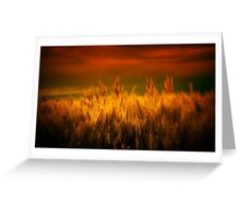Winds of Harvest Greeting Card