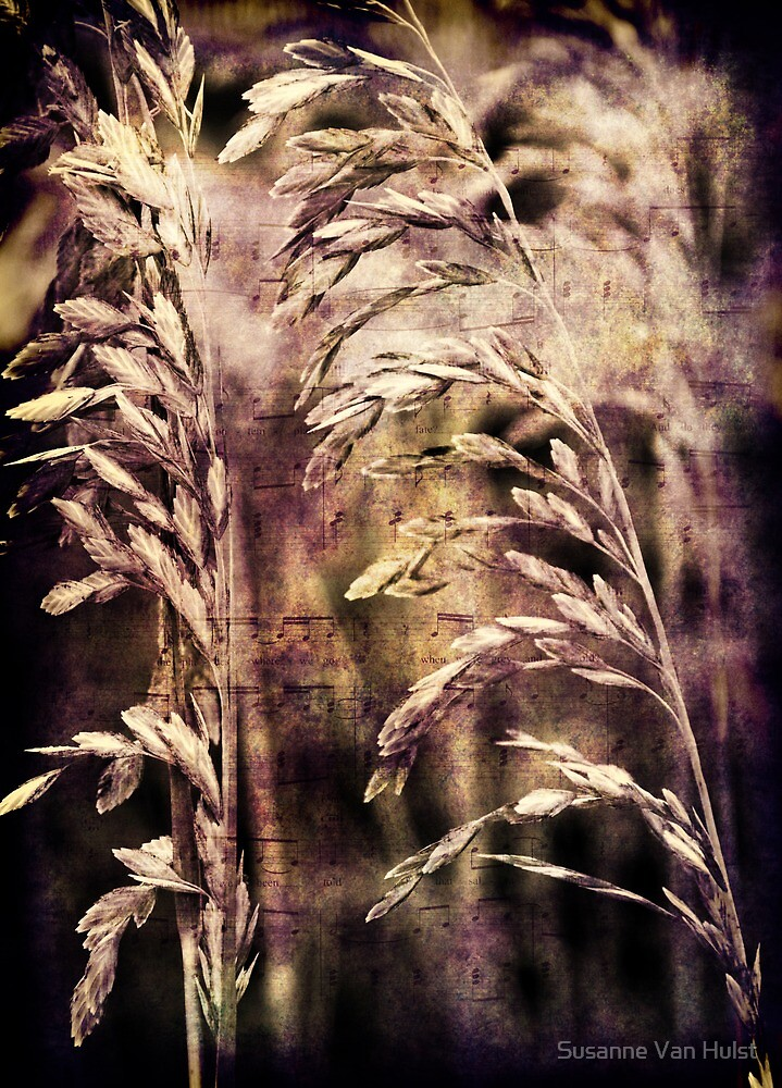 The song of the wind by Susanne Van Hulst