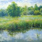 Pond reflections by Julia Lesnichy