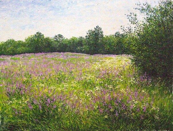 Meadow in June by Julia Lesnichy