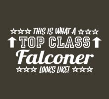 This Is What A Top Class Falconer Looks Like by Chimpocalypse