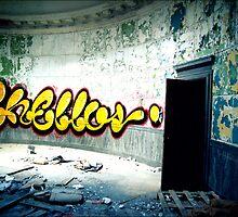 An Open Door. by Carolyn Walesa