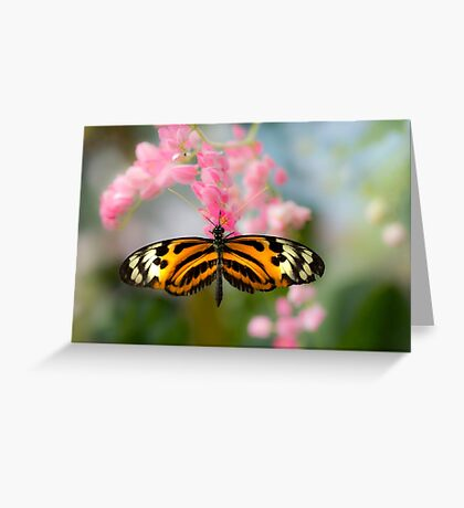 Impressionistic Longwing Greeting Card