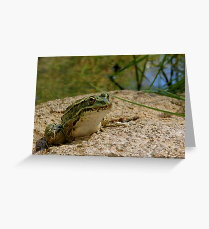 Chiricahua Leopard Frog Greeting Card