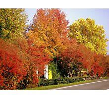 Autumnal Brightness Photographic Print
