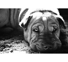 Wrinkle Face Photographic Print