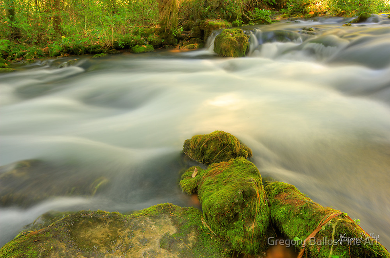 Wooded Stream by Gregory Ballos | gregoryballosphoto.com