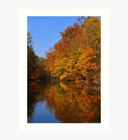 Mohican Autumn Art Print