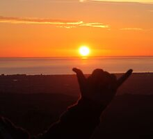 Shaka at the Setting sun over Adelaide by Glynn Jackson