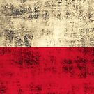 Vintage Grunge Polish Flag by PolishArt