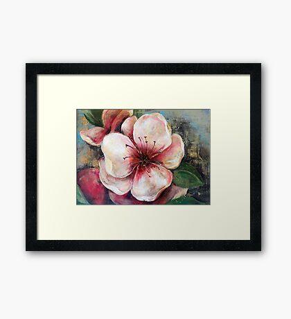 Gentleness - Peach Framed Print