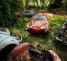 Junk Yard Volkswagens by Sam Scholes