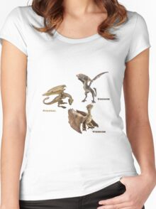 dragons Women's Fitted Scoop T-Shirt