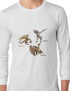 dragons Long Sleeve T-Shirt