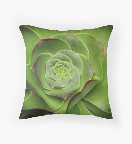 Green Aeonium Throw Pillow