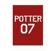 Potter Quidditch team Art Print