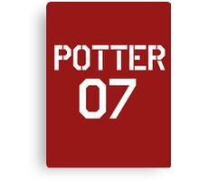 Potter Quidditch team Canvas Print