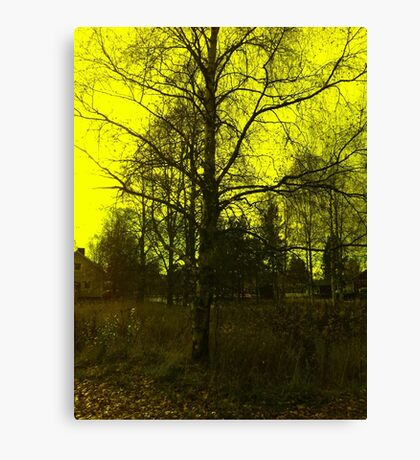 Sweden landscape Canvas Print