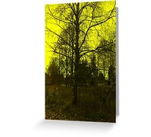 Sweden landscape Greeting Card