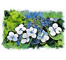 Blue Wave - watercolour Photographic Print