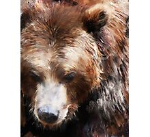 Bear // Gold Photographic Print