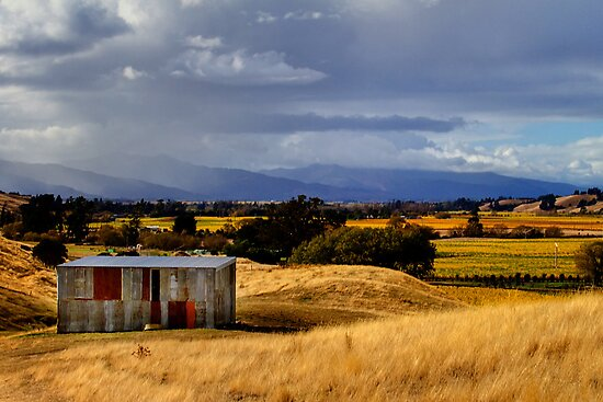 The Wairau Plains by Robyn Carter