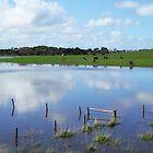 Flooded... by Chris Kean
