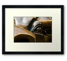 bronze eye Framed Print