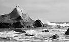 Two Gulls at Gossip Rock by Corri Gryting Gutzman