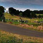 farmland hannam vale by gutto