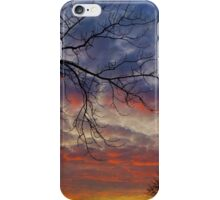 See the Invisible iPhone Case/Skin