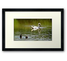Hey Mom....watch this. Darn, missed it again Framed Print
